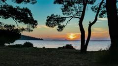 Mediterranean sunset through the pine trees. 4k Stock Footage