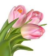 Stock Illustration of Beautiful bouquet of pink tulips. EPS 10