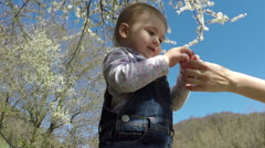 Small child playing in the park. Spring. Flowering tree. Blue sky Stock Footage