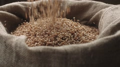 Jute sack filling wheat that pours from above in slow motion Stock Footage