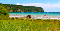4K Tall Green Grass Blades in Foreground, Sand Beach and Blue Water Background Stock Footage