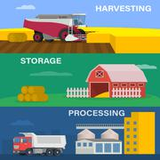 Agriculture design concept set with of the process harvesting crops - stock illustration