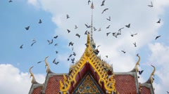 A flock of birds is flying heading toward the top of Buddhism temple gable - stock footage
