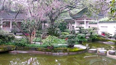 Beautiful landscape of the lake and trees in the city of Chongqing Chinese park. Stock Footage