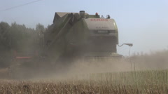 Noisy combine harvester harvesting rapeseed in the field on sunny autumn day Stock Footage