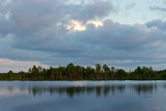 Stock Photo of Summer on the bog lake. Forest and sky reflection in the swamp