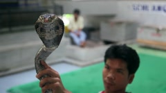 Snake charmer holding a cobra in front of the camera - Sacred cameraman Stock Footage
