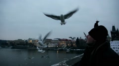 A man feeding the seagull birds in the air . humanity-animal rights Stock Footage