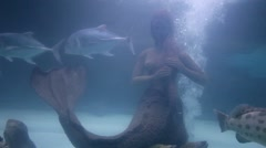 A group of fishes swimming around a Mermaid statue in the water Stock Footage