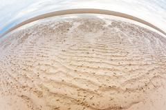 Ghost crab hole on the beach - stock photo