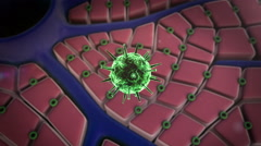 Virus atack the cells Stock Footage