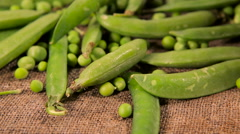 Background of old sack with green fresh peas. Stock Footage