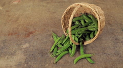 Basket of ripe pea pods. background old sack. Stock Footage