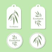 Silhouette of Eucalyptus with leaves.  Medicinal plant. Healthy lifestyle Stock Illustration