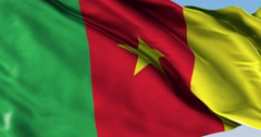 Ultra realistic looping flag: Cameroon - stock footage