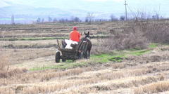Two man on old wooden cart at rural road, harvest time Stock Footage