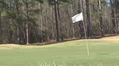 Golf course green flag Stock Footage