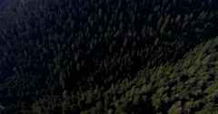 Aerial drone shot of evergreen forest, Kniebis, Baden-Wuerttemberg, Germany - stock footage