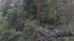 4k, tourists are coming down the wooden stairs for take the train in Alishan-Dan Stock Footage