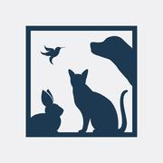 Vector group of pets in the frame - Dog, cat, bird, rabbit, Isolated on a whi Stock Illustration