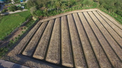 Aerial view of empty vegetable field in suburb area Stock Footage