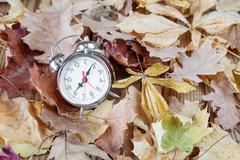 Alarm on fallen leaves - stock photo