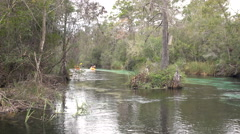 Going Downstream On The Weeki Wachee River In The State Park Florida Stock Footage