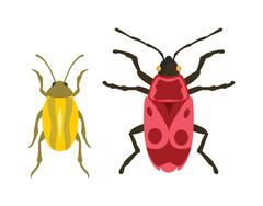 Beetle flat insect bug in cartoon style vector - stock illustration