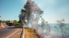 Day phuket island fire burning hill panorama 4k time lapse thailand Stock Footage