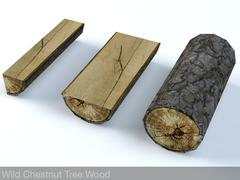 Wild Chestnut Fire Wood 3D Model