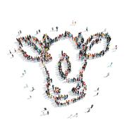 group  people  shape  cow - stock illustration