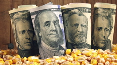 Successful agricultural production, making profit after corn harvest in America Stock Footage