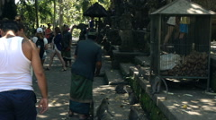 People sightseeing Ubud Monkey Forest in Bali, super slow motion 240fps Stock Footage
