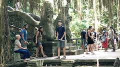 People sightseeing Ubud Monkey Forest in Bali Stock Footage