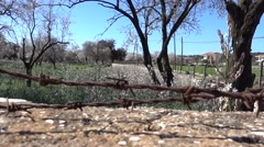 Garden behind fence with barbered wire Stock Footage