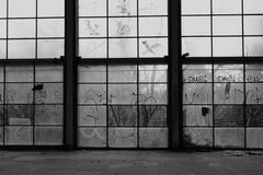 glass wall broken windows - stock photo