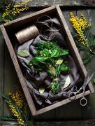 Garni bouquet fresh spring herbs bunch in rustic style - stock photo