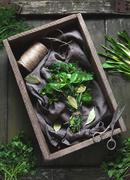 Garni bouquet natural organic herbs seasoning bunch with scissors - stock photo