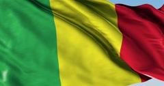 Ultra realistic looping flag: Mali Stock Footage