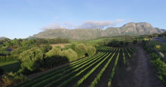 Aerial view of picturesque vineyard with mountains in the background, Cape Town Stock Footage