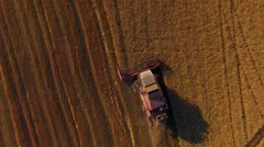 Rural Combine Working On Buckwheat Field - stock footage