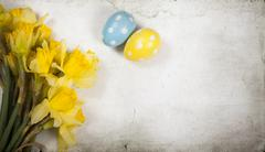 Easter background with painted eggs and blooming daffodils - stock photo