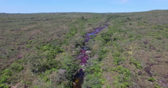 Cano Cristales from High Up Stock Footage