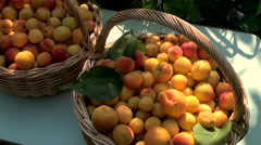 Fruits of Apricot in Baskets Stock Footage