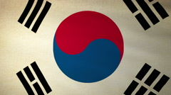 Flag South Korea Stock Footage
