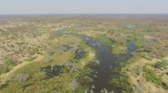 Aerial views of the water ways of the Okavango Delta Stock Footage
