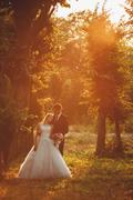 Beautiful romantic wedding couple of newlyweds hugging in park on sunset - stock photo