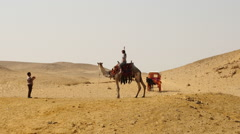 Tourists & Camel Pose for Photo in the Desert - Giza - Egypt - stock footage