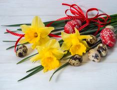 Narcissus flower and quail egg. - stock photo