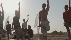 Group of Young People Are Making Tree Pose in a Half Lotus During a Master Stock Footage